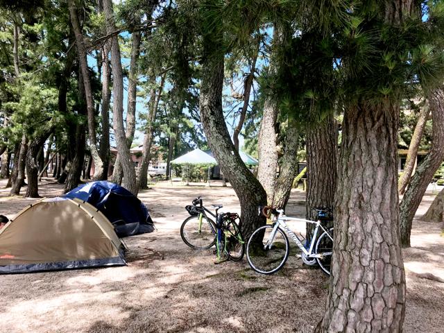 白浜荘オートキャンプ場写真4